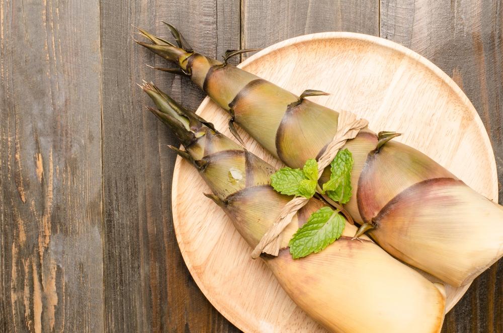 benefícios do broto de bambu