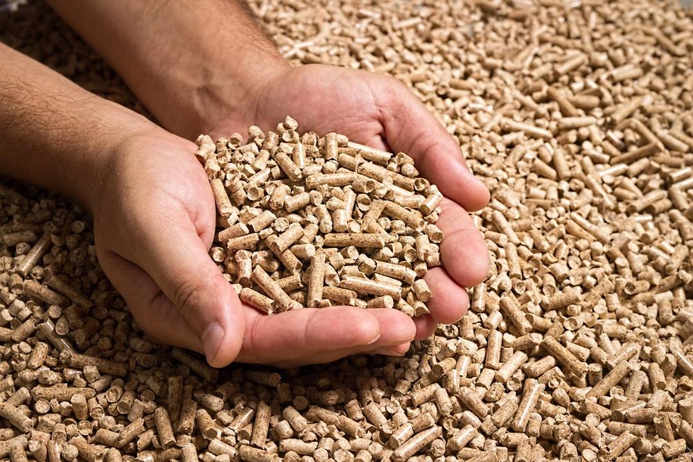 biocombustiveis no brasil